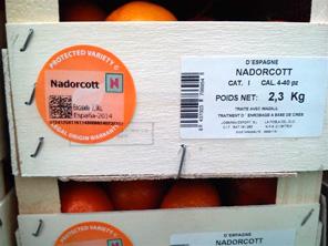 Nadorcott caja Jobarma